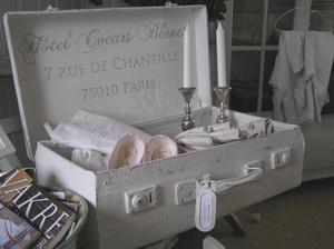 Resväska med fransk text